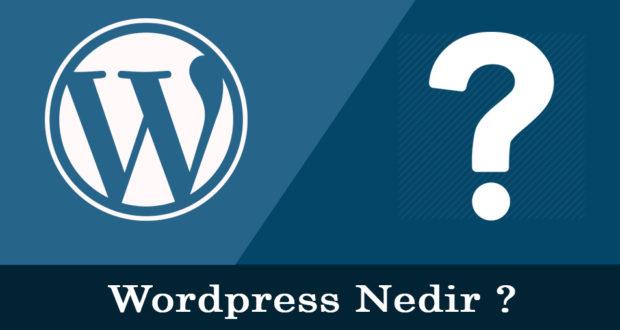 Wordpress Nedir & Wordpress Kullanım Alanları Nelerdir ?